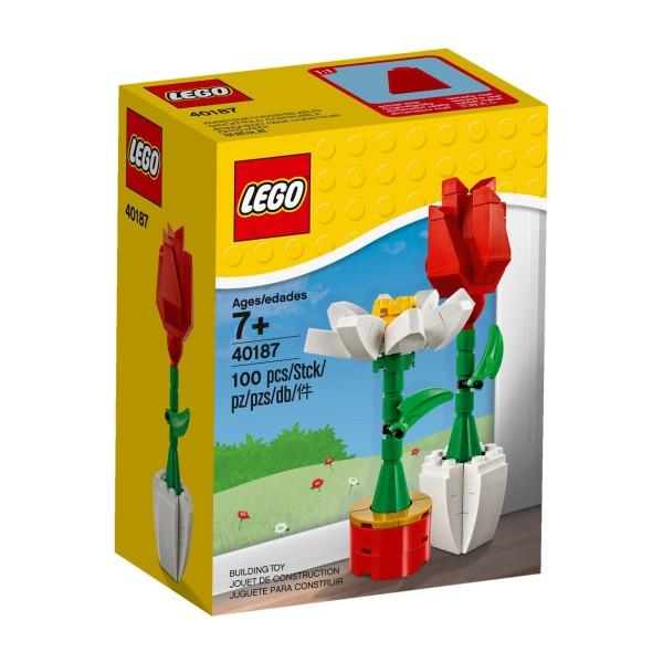 LEGO® 40187 Blumenpracht